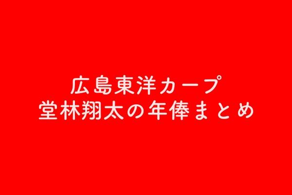 広島東洋カープ堂林翔太の年俸まとめ【分かりやすさNo.1】